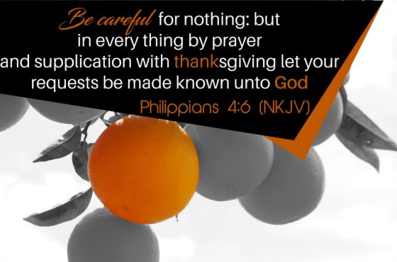 Scripture: Prayer and Thanksgiving…